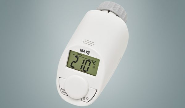 Max1 thermostat raspberry
